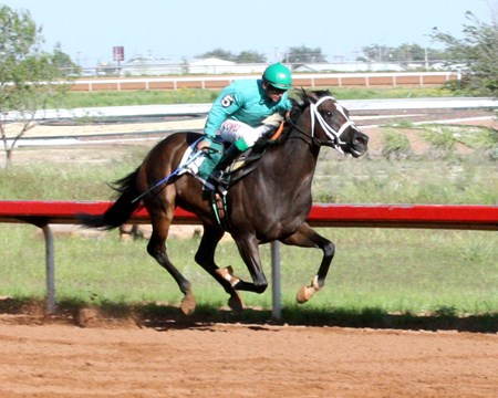 Molly's Honour wins the 2014 Chaves County Stakes.