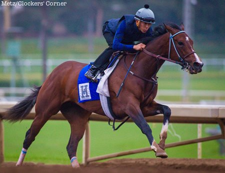Songbird works at Santa Anita Park