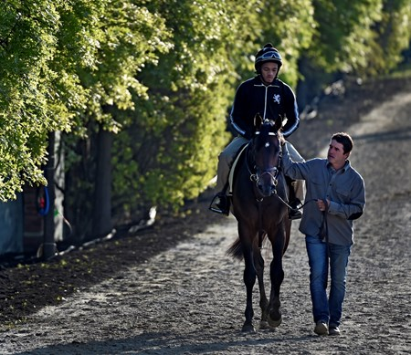 Trainer Keith Desormeaux walks Kentucky Derby Runner-up Exaggerator Friday morning May 20, 2016 after morning exercise in preparation for Saturday's 141st running of the Preakness Stakes at Pimlico Race Course in Baltimore, MD.