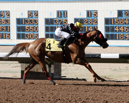Cassy Sue wins The Budweiser May 2, 2016.