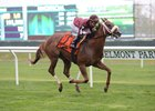 Lady Shipman wins the License Fee Stakes at Belmont Park May 1.