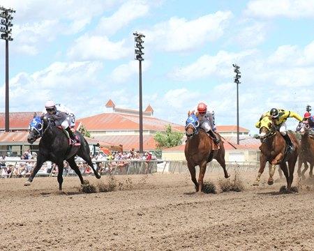 Equibase Adds Quarter Horse Information Bloodhorse