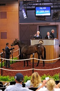 Uncle Mo filly tops Fasig-Tipton Midlantic sale.
