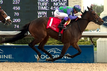 Gamble's Ghost wins the Selene Stakes