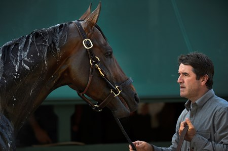 Trainer Keith Desormeaux holds Kentucky Derby Runner-up Exaggerator Friday morning May 20, 2016 after morning exercise in preparation for Saturday's 141st running of the Preakness Stakes at Pimlico Race Course in Baltimore, MD.