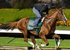 California Chrome 'Stronger' in Los Al Drill