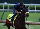 Gryder Seeks First Derby With Trojan Nation