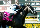 Eclipse Thoroughbred Partners' Illuminant and jockey Flavien Prat win the Grade I, $300,000 Gamely Stakes, Monday, May 30, 2016 at Santa Anita Park, Arcadia CA.