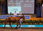 Magic Millions Weanling Sale Sets Records