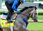 Mohaymen gallops at Churchill Downs prior to his start in the 2016 Kentucky Derby