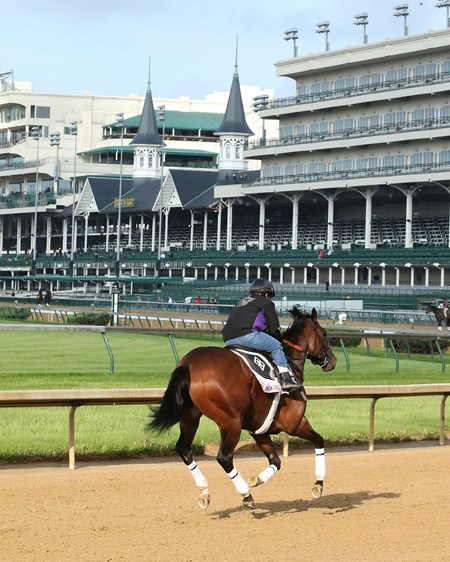 Go Maggie Go - Churchill Downs, May 2, 2016