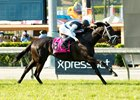 Illuminant wins the Gamely Stakes