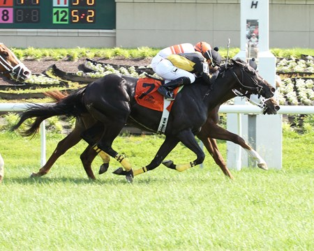 Bucket Beat dead heats in the Green Carpet Stakes with Linda's Luck.