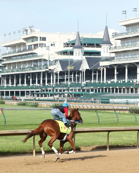 Gun Runner works at Churchill Downs May 2, 2015