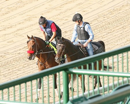 Nyquist jogs at Churchill Downs for the first time May 1, 2016