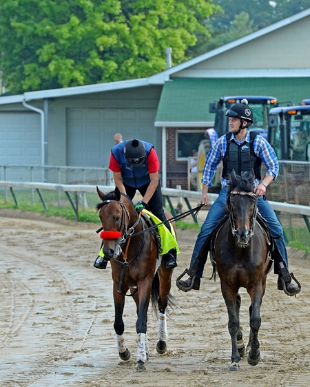 Nyquist with Jonny Garcia jogging with Jack Sisterson on Satire. Works at Churchill Downs on May 1, 2016, in Louisville, Ky.