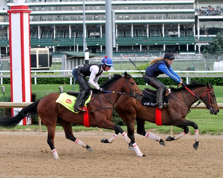 Discreetness on the track at Churchill Downs on May 4, 2016.