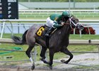 Bode's Dream wins at Gulfstream Park May 11