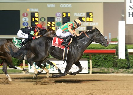 Great Minds wins the 2016 Texas Mile