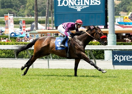 Ambitious Brew and jockey Flavien Prat win the Lennyfromalibu Stakes Saturday, May 28, 2016 at Santa Anita Park, Arcadia CA.