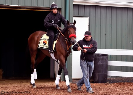 Nyquist heads to the Pimlico Racetrack