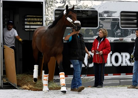 Nyquist arrives at Pimlico