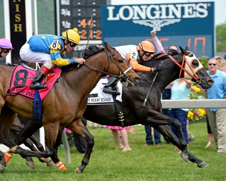 Ben's Cat splits horses to win the Jim McKay Turf Sprint May 20 at Pimlico Race Course
