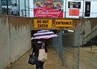 Steady rain fell Preakness morning May 21