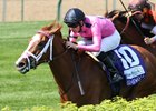 Catch a Glimpse Needs to be Mighty in Oaks
