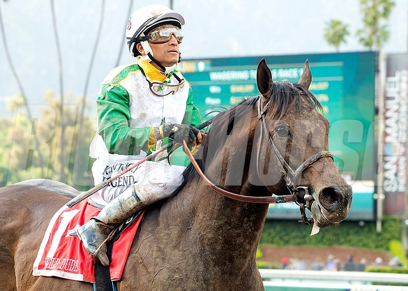 Wild Dude and jockey Rafael Bejarano win the Grade II, $200,000 Kona Gold Stakes