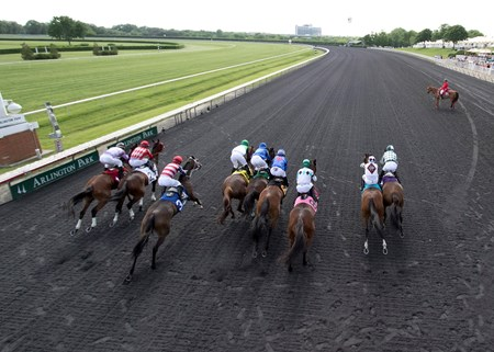 Horses leaving the gate in the Arlington Matron at Arlington International on 5/28/16