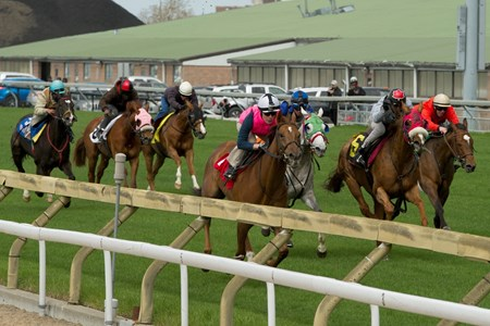 Seven horses sprinted five furlongs out of the gate, clockwise, on the E.P. Taylor Turf Course the morning of May 16 as a trial run for Woodbine's EuroTurf Series slated to start in June.