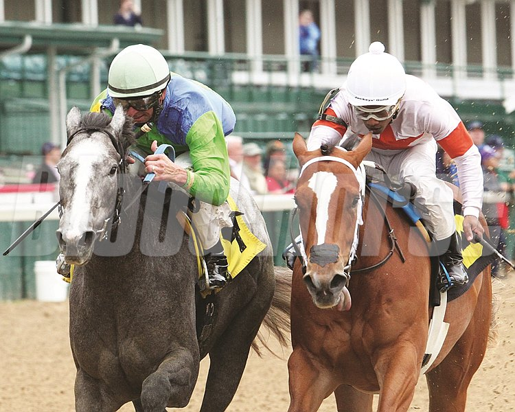 Maximum Edge Maiden Win, May 20, 2016 First winner for Dialed In