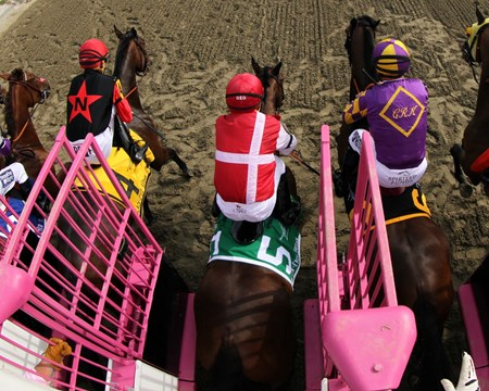 Go Maggie Go (#5) with Luis Saez leave the starting gate prior to winning the 92nd Running of the Black-Eyed Susan Stakes over Ma Can Do It (#4) with Brian Hernandez Jr. who finished second at Pimlico on May 20, 2016.