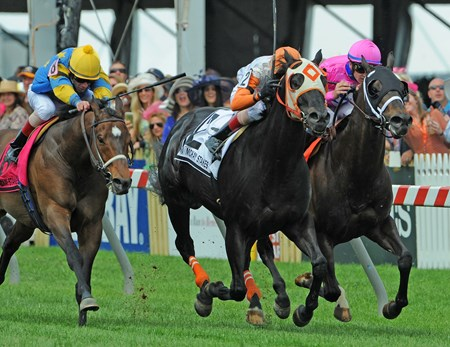 Ben's Cat (#2) Trevor McCarthy up, splits horses and wins the Jim McKay Turf Sprint at Pimlico.