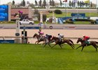 First Clockwise Trial Held on Woodbine Turf