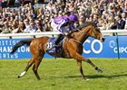 Minding wins at Newmarket