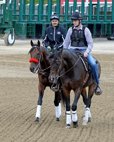 Nyquist with Jonny Garcia going to the track with Jack Sisterson on Satire Preakness week at Pimlico in Baltimore, Md., on May 19, 2016.