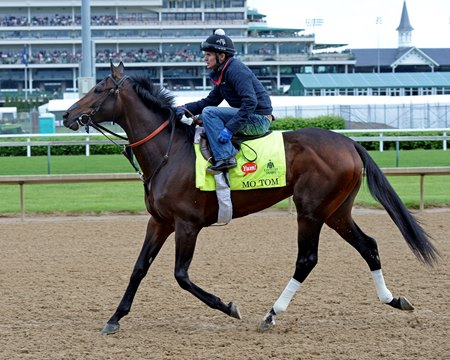 Mo Tom at Churchill Downs on May 5, 2016, in Louisville, Ky.