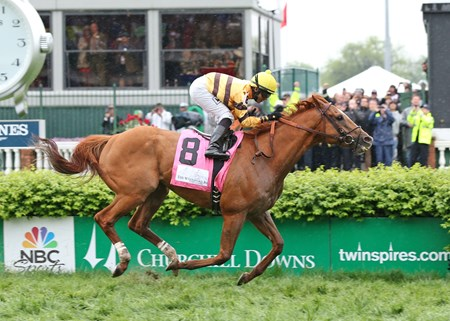 Reigning Horse of the Year Wise Dan wins the 2013 Woodford Reserve Turf Classic at Churchill Downs.