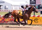 Recruiting Ready wins in his first start, a maiden special weight event at Pimlico Race Course in May