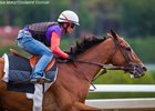 Beholder Fires Bullet, Ready to Rumble