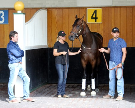 Exaggerator schooling in the Churchill Downs paddock as Trainer Keith Desormeaux looks on May 2, 2016.