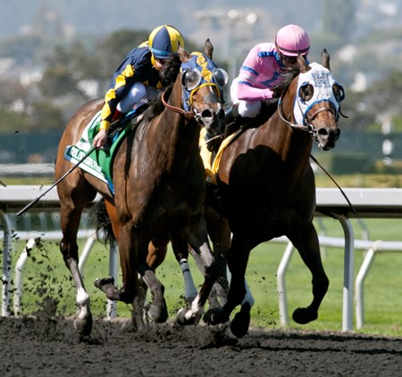 Living the Life wins the All American Stakes at Golden Gate Fields May 30, 2016