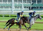 Mor Spirit Move Pleases Baffert, Stevens