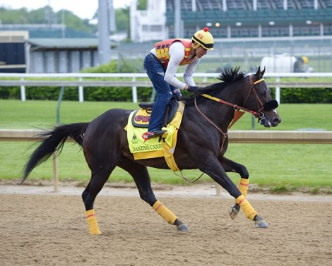 Danzing Candy Trojan Nation Train In Ky Bloodhorse