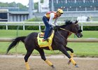 Danzing Candy trains at Churchill Downs May 3