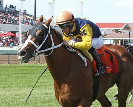 Richies Sweetheart is among those entered in Jill Jellison Memorial Dash at Suffolk Downs