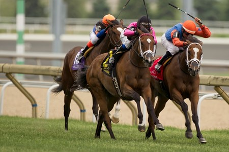 Jockey Patrick Husbands guides #6 Lexie Lou (pink silks black cap) to victory in the $200,000 Nassau Stakes at Woodbine Racetrack over the E.P.Taylor Turf Course.