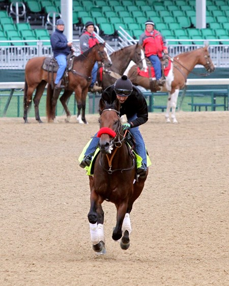 Nyquist on the track at Churchill Downs on May 3, 2016.